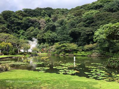 海地獄 蓮の池